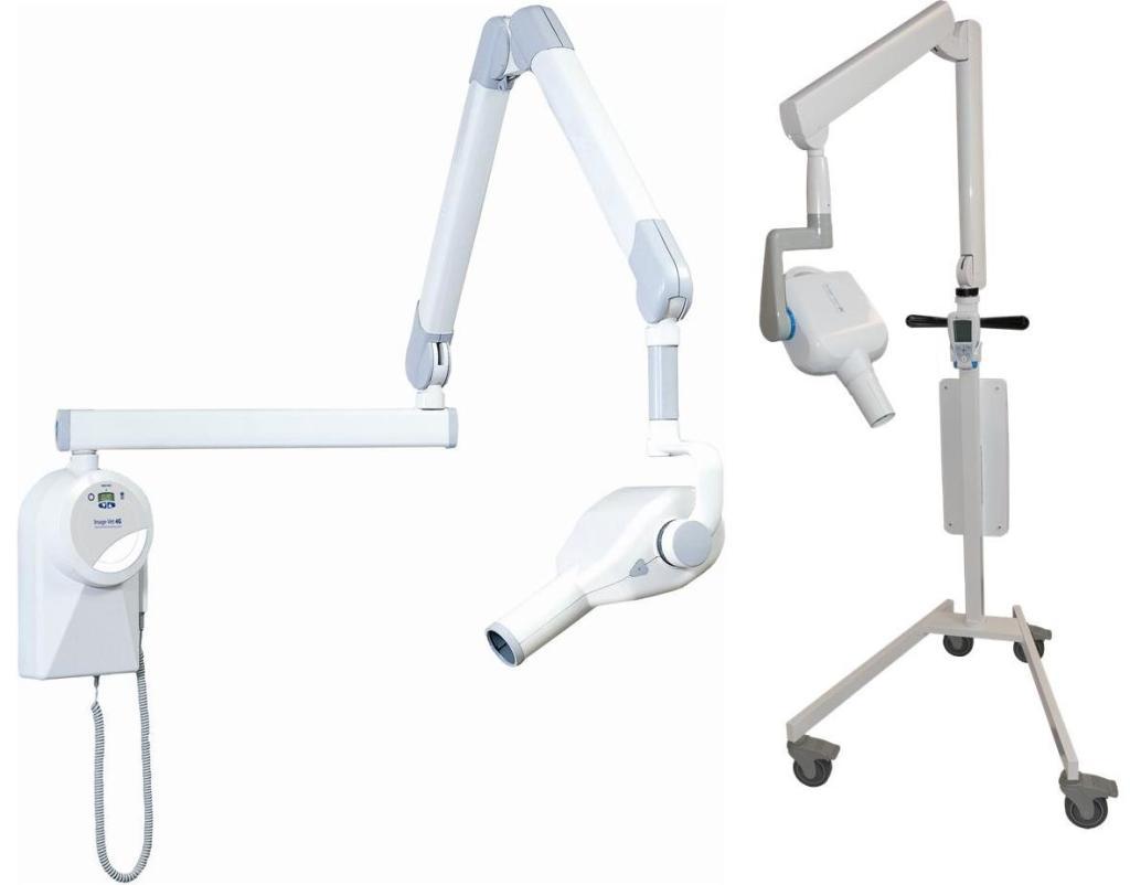 Vet Dental System